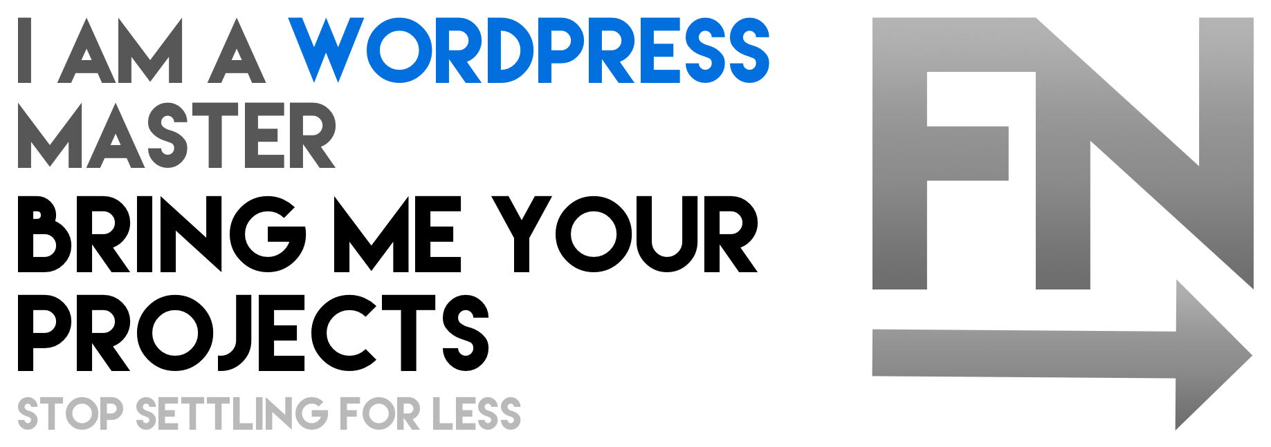 Friday Next - WordPress Masters